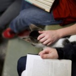 "Seth Wiggins and Ethan Wiggins read to ""Tyler,""at the Berks County Animal Rescue League in Birdsboro"