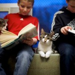 "Seth and Ethan Wiggins read to ""Stewart"" and ""Tyler,""at the Berks County Animal Rescue League in Birdsboro"